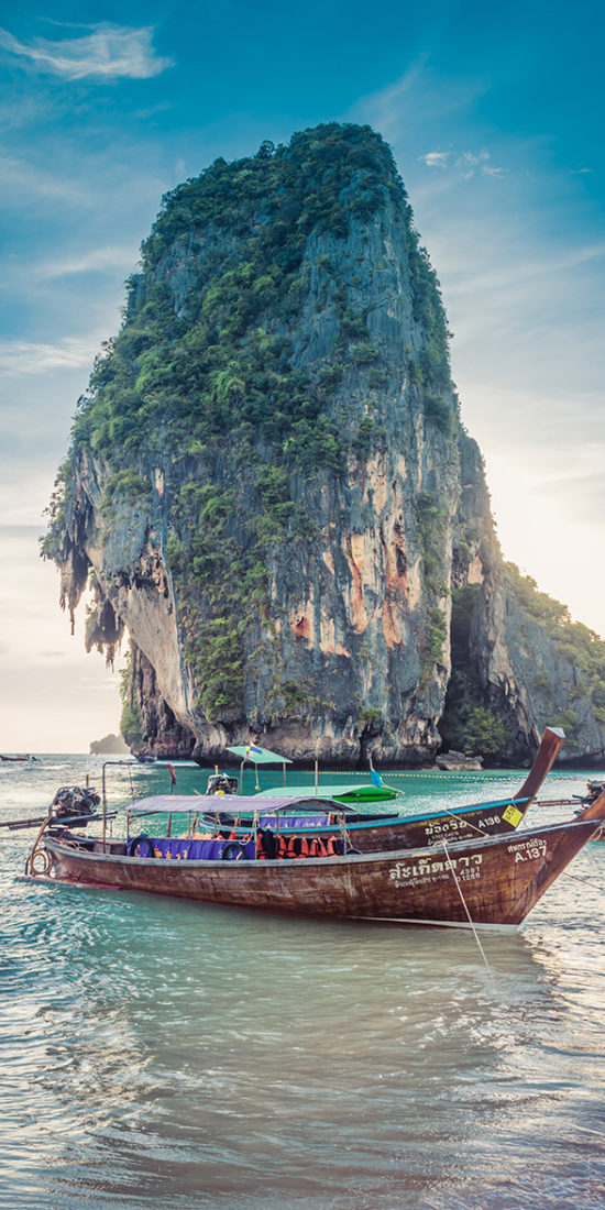 Explore Thailand - Global Vet Experience