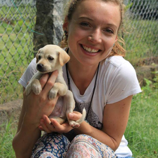 Vet-Experience-in-India-Small-Puppy---Global-Vet-Experience