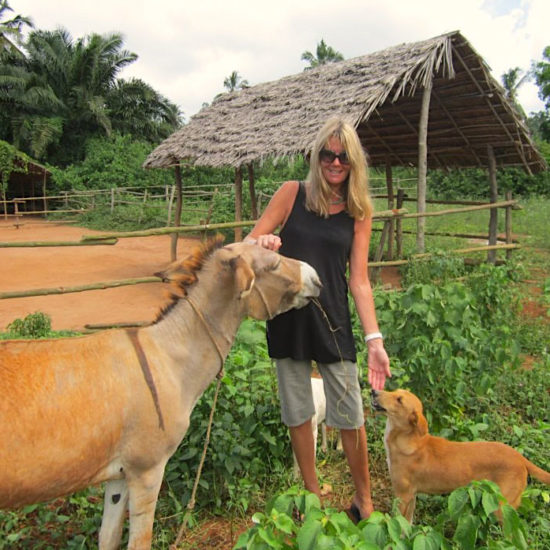 Vet-Experience-in-Tanzania-Farm-Animals---Global-Vet-Experience