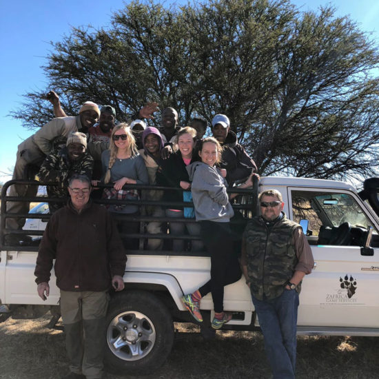 Wildlife-Vet-in-South-Africa-Game-Capture---Global-Vet-Experience