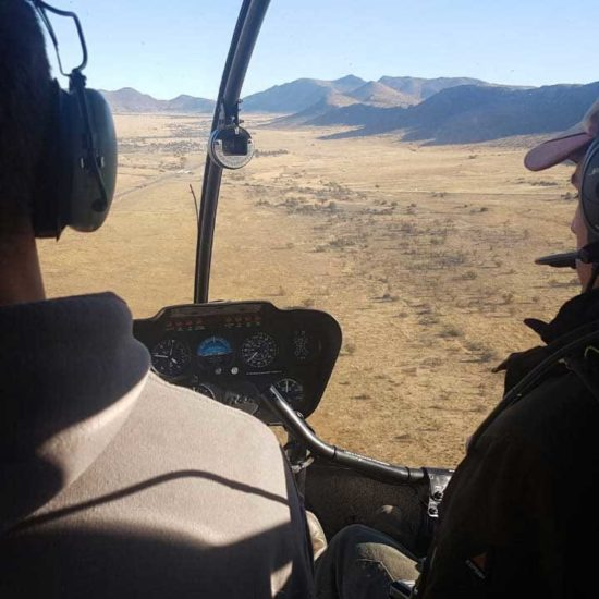 Wildlife-Vet-in-South-Africa-Helicopter---Global-Vet-Experience