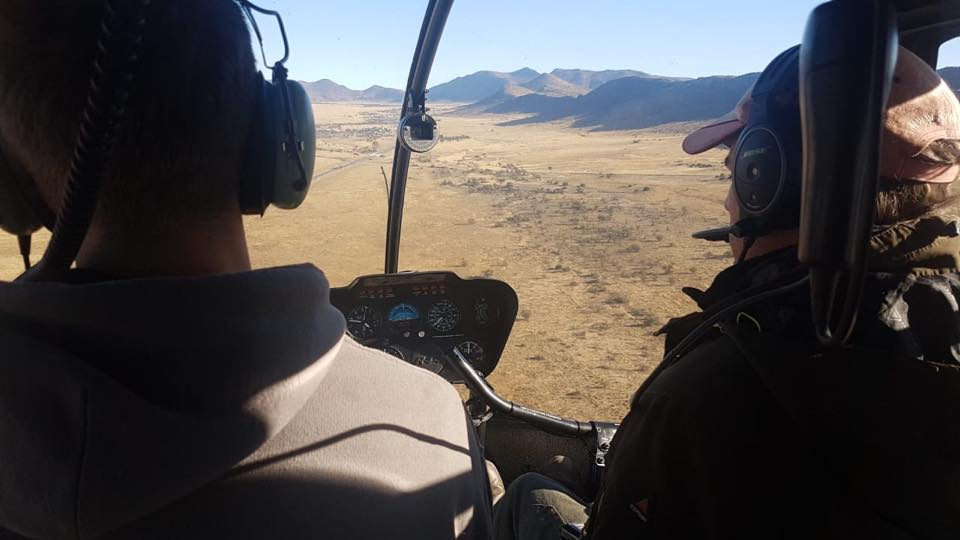 Helicopter cockpit during wild animal capture - Global Vet Experience