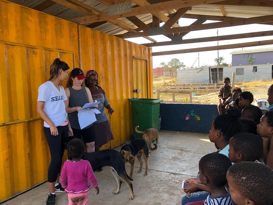 Using Canines to Give a Demonstration to School Children - Global Vet Experience