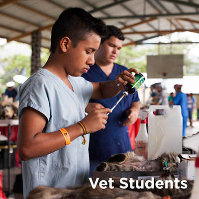Experience the Global Vet Experience New