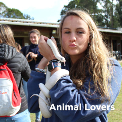 Explore Animal Lover Opportunities - Global Vet Experience